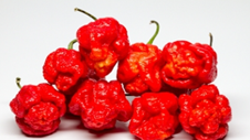 Moruga Red Peppers